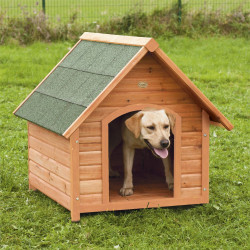 Casa per cane