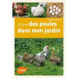 Allevo polli nel mio giardino