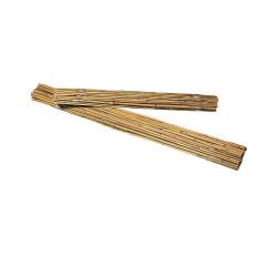 20 pali, bambù naturale