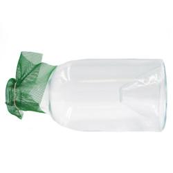 Caraffa Minnow, vetro
