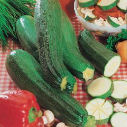 La bellezza della zucchina nera