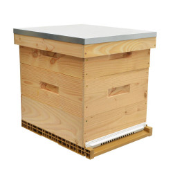 Alveare Dadant legno douglas top di gamma