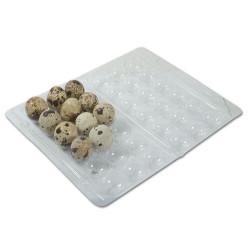 Scatola di plastica per uova di quaglia 18 uova